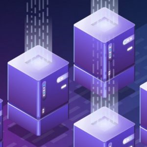 Digital S Nexeed Server 2